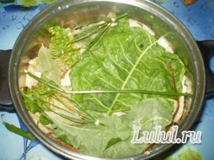 засолка грибов холодным способом рецепт с фото
