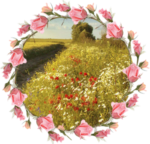 Народные приметы на 11 августа Калинов день