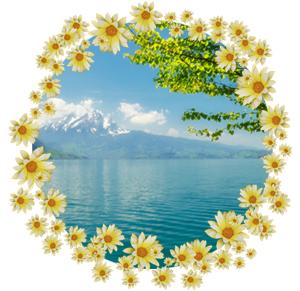Народные приметы на 22 июля день памяти Кирилл и Панкратий , черничный день