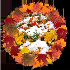 народные приметы на 10 октября – день памяти Саватия пчельника (Саватий соловецкого)