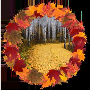 Народные приметы на 23 октября день памяти Евлампия-зимоуказателя и Евлампии-зимоуказательницы