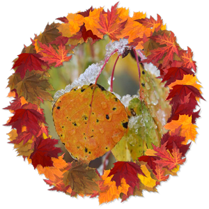 Народные приметы на 28 октября смотрины льна, день Ефима благочестивого