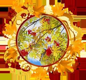 народные приметы на 7 октября – день памяти Феклы Заревницы