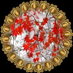 Народные приметы на 19 ноября день Варлаама хутынского и Павла исповедника