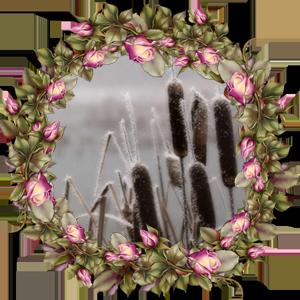 Народные приметы на 9 ноября день Матрены, день Параскевы
