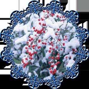 Народные приметы на 14 декабря Наумов день