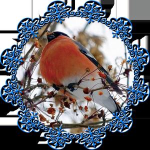 Народные приметы на 16 декабря день памяти Иоанна Молчальника
