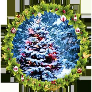 Народные приметы на 31 декабря день Модеста