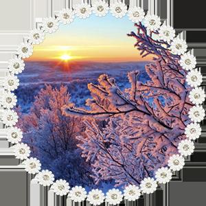 Народные приметы на 31 января день Афанасия и Ломоноса