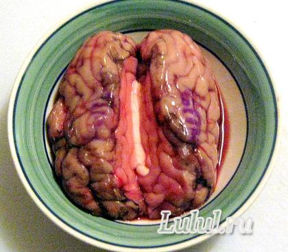 бараньи мозги рецепт с фото