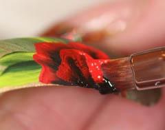 дизайн ногтей китайская роспись фото