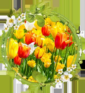 Народные приметы на 23 мая день памяти Симона Зилота