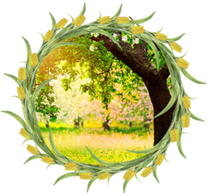 Народные приметы на 25 мая Рябиновка или День  Епифана