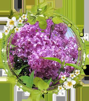 Народные приметы на 29 мая День Федора Житника