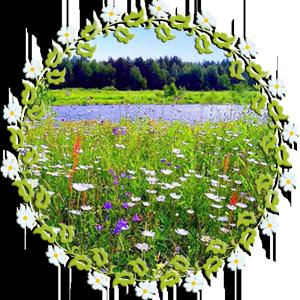 Народные приметы на 6 июня день памяти чудотворца Симеона Столпника