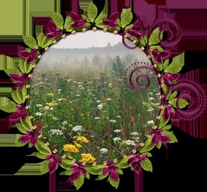 Народные приметы на 2 августа день памяти пророко Ильи