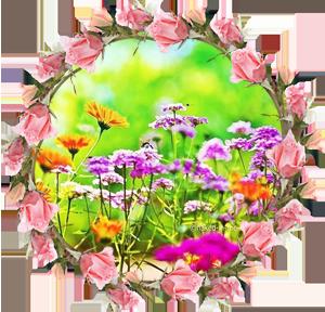 Народные приметы на 9 августа день памяти Николая Кочанского Пантейлемона целителя