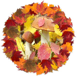 народные приметы на 11 октября – день памяти Ильи муромца