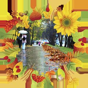 Народные приметы на 13 сентября Журавлиный вече, Куприянов день