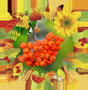 Народные приметы на 16 сентября День Василисы, День памяти Святой Домны