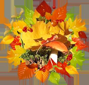 Народные приметы на 19 октября День памяти Фомы, день Дениса ,