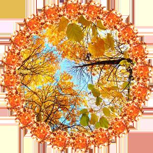 Народные приметы на 21 сентября Рождество Богородицы. Урожайный праздник