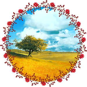Народные приметы на 24 сентября День Федора Обдера
