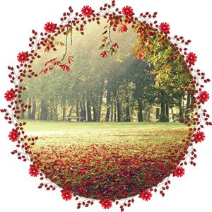 Народные приметы на 28 сентября День Гусятника
