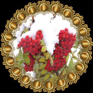 Народные приметы на 10 ноября день Параскевы, день Макоши