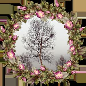 Народные приметы на 12 ноября день Зиновии и Зиновия