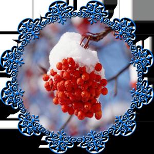 Народные приметы на 25 декабря день памяти Спиридона, Солнцеворот